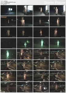 Japanese Exhibitionism and public outdoor sex 18