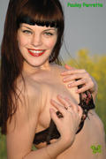 th 124378750 77 123 591lo Pauley Perrette Nude Fake and Sexy Picture